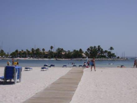 Beach/Coast/Harbor -
