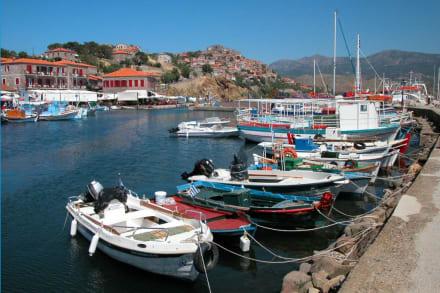 Der Hafen von Molivos - Fischereihafen Molivos