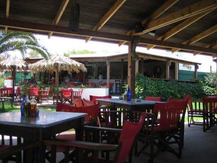 Tam Tam Bar - Tam Tam Beach Bar