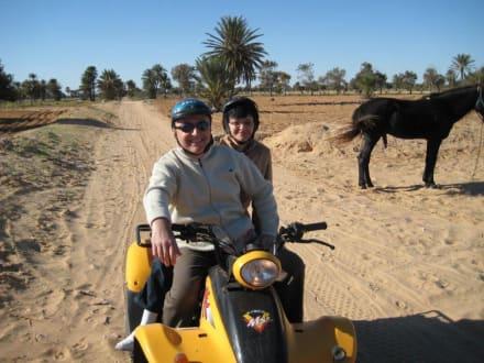Quad Tour - Quad Tour Midoun
