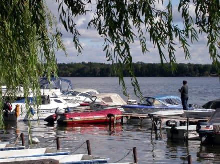 Privat-Boote am Scharmützelsee - Scharmützelsee