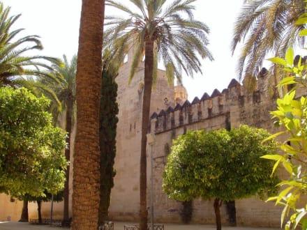 Burg/Palast/Schloss/Ruine - Altstadt Cordoba