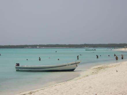 Isla Madrizqui - Isla Madrizqui