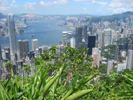Hong Kong Skyline vom Victoria Peak - Victoria Peak
