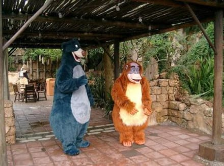 Park bereich Afrika - Animal Kingdom