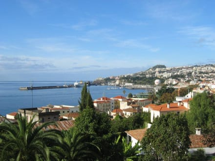 Blick über den Hafen von Funchal - Hafen Funchal