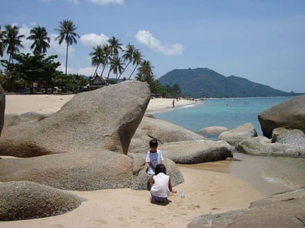 Strand - Strand Lamai Beach