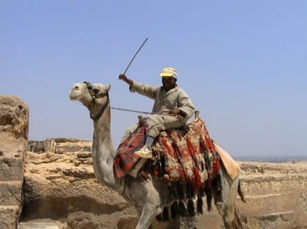 Reiter an den Pyramiden - Pyramiden von Gizeh