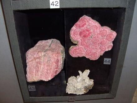 Mineralien und Gesteine aus dem Schweiz Gletschergarten - Gletschergarten