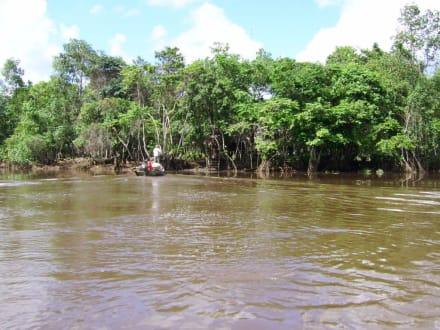Blick auf eine Indio-Siedlung - Orinoco Delta