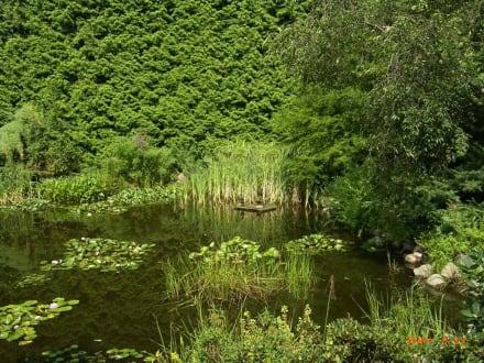 Privater Garten in Christiansberg - Botanischer Garten Christiansberg