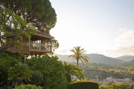 Tree House -