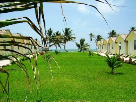 Das Royal Caribbean Resort - Hotel Royal Caribbean Resort