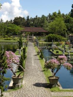 Badeteiche - Tirtaganga Royal Pools /  Wasserpalast Taman Tirta Gangga