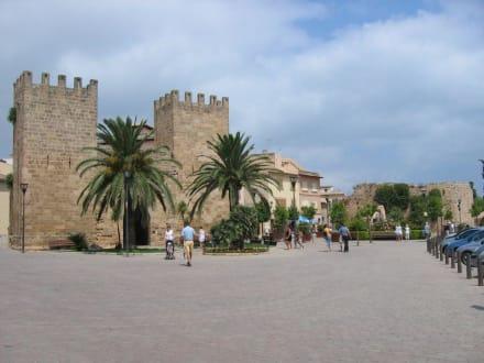 Stadttor mit Stadtmauern - Porta del Moll
