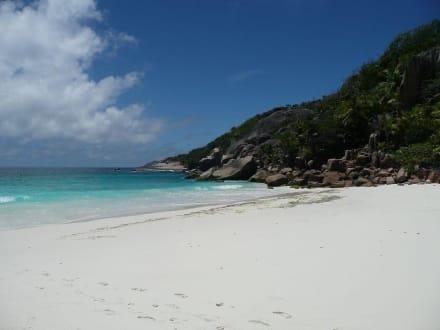 Sister Island - Sister Island