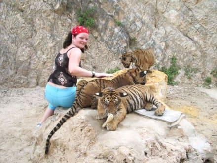 Ich und die Babys - Tigertempel