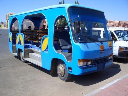 Shattelbus - Transport