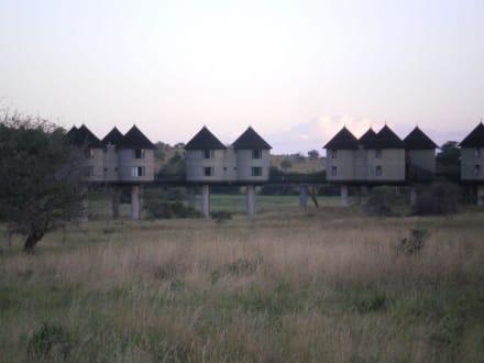 Hilton Hotel - Tsavo West Nationalpark