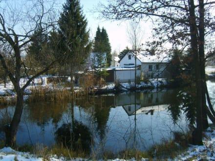 Winterliche Spiegelungen - Plattling