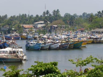Fischerhafen in 500 m Entfernung - Hafen Beruwela