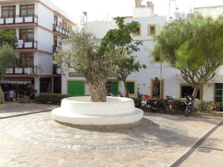 Vor der Kirche - Kirche Sant Antoni Abat