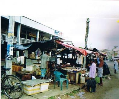 Fischmarkt an der Straße - Fischmarkt Kalutara