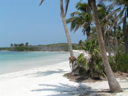 Isla Contoy - Isla Contoy
