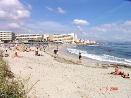 Stand von Son Baulo ca. 300 m vom Hotel - Strand Can Picafort