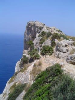 Aussicht vom Kap Formentor - Cap Formentor