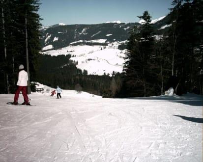 Schöne Abfahrt - Skigebiet Dachstein