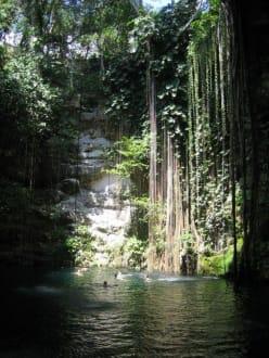 Cenote von Ikkil - Cenote Ik-Kil