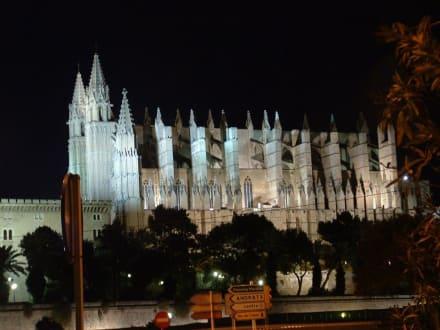 Catedral La Seu - Kathedrale La Seu