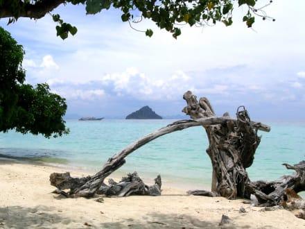 Loh Ba Gao Bay - Insel Phi Phi Don