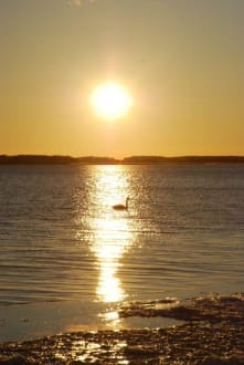Sonnenuntergang am Achterwasser Zempin - Achterwasser