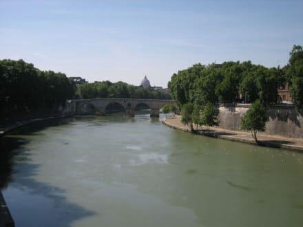 Der Tiber - ein Bild der Ruhe - Tiber Fluss