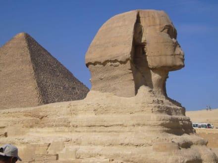 Hergezoomt - Sphinx von Gizeh