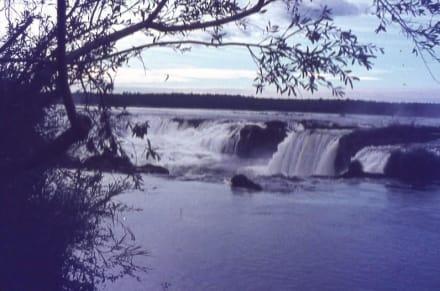 In der Nähe eines kleineren Wasserfalles - Wasserfälle von Iguazu