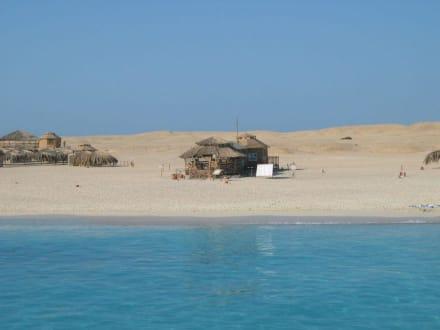 Ausflug Giftun Insel - Giftun / Mahmya Inseln