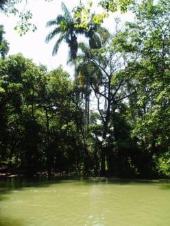 Landschaft zwischen Santo Domingo und Haiti - RH Tours