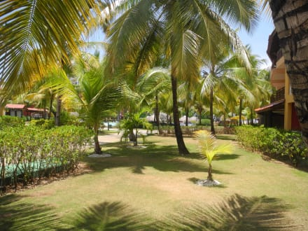 Garten - Hotel Caribe Club Princess/Caribe Star
