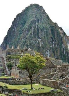 Machupicchu - Machu Picchu