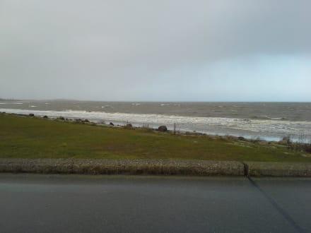 Stürmisches Meer am Hafen - Fährhafen Puttgarden