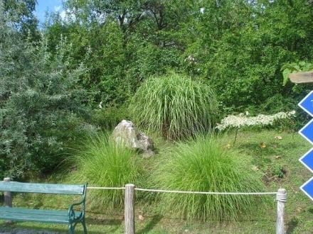 Parkanlage - Tierwelt Herberstein