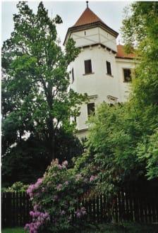 Burg Konopiste - Schloss Konopiste