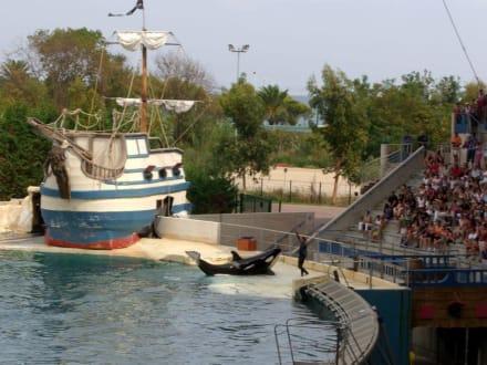 Freizeitpark - Marineland