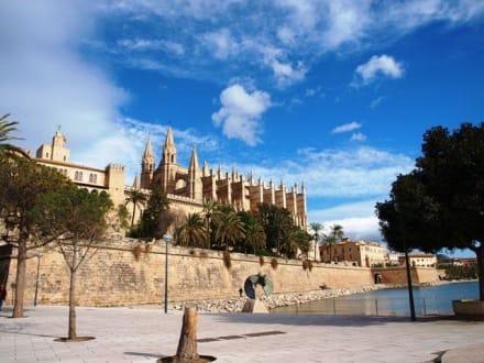 Kathedrale La Seu und Palau de L'Almudaina - Kathedrale La Seu