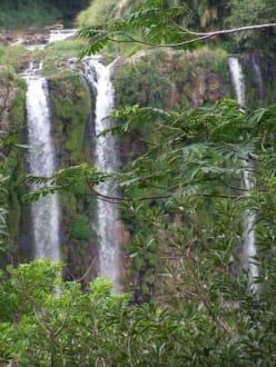 Schönste Momente... - Chamarel-Wasserfall