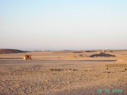 Beduinendorf in der Wüste - Jeep Safari Hurghada