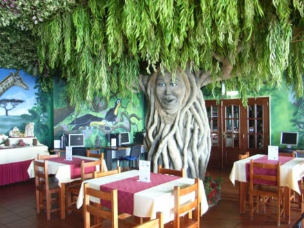 Jungle Rain Cafe  neben dem Hotel Pico da Urze - Jungle Rain Cafe